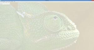 Enlarge Comma Chameleon Screenshot