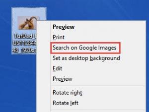 Enlarge GoogleImageShell Screenshot
