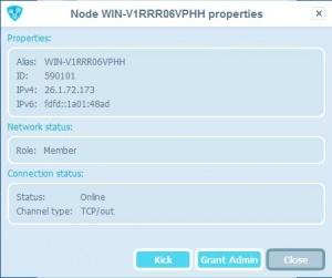 Enlarge Radmin VPN Screenshot