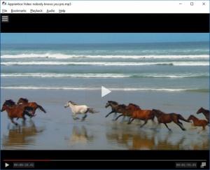 Enlarge Apprentice Video Screenshot