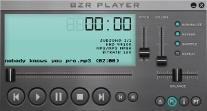 Enlarge BZR Player Screenshot