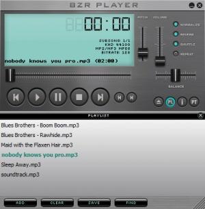 Enlarge BZR Player Screenshot