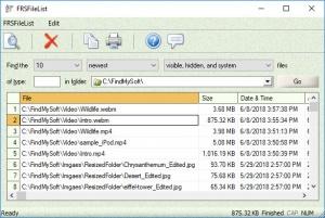 Enlarge FRSFileList Screenshot