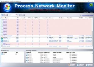 Enlarge Process Network Monitor Screenshot