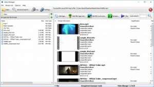 Enlarge Video Manager Screenshot