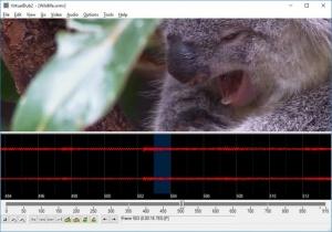 Enlarge VirtualDub2 Screenshot