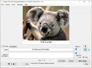 Enlarge Caption Pro Screenshot
