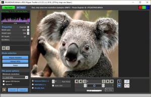 Enlarge JPEG Repair Toolkit Screenshot