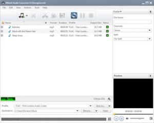 Enlarge Xilisoft Audio Converter Screenshot