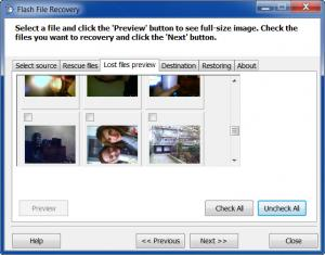Enlarge Flash File Recovery Screenshot