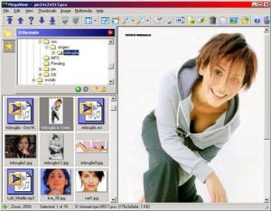 Enlarge MegaView Screenshot