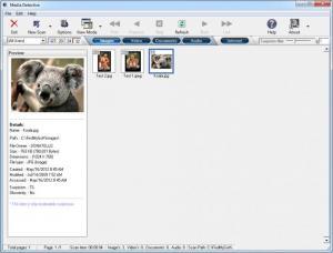 Enlarge Media Detective Screenshot