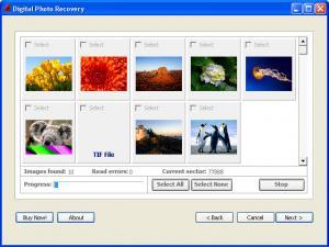 Enlarge Digital Photo Recovery Screenshot
