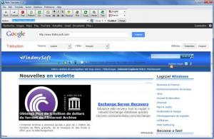 Enlarge Web Translator Screenshot