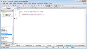 Enlarge EditPlus Screenshot
