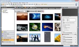 Enlarge StudioLine Photo Classic Screenshot