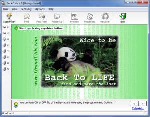 Enlarge Back2Life Screenshot