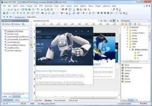 Enlarge Rapid PHP Screenshot