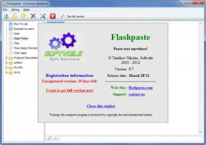 Enlarge Flashpaste Screenshot