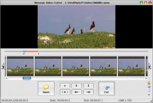 Enlarge Naturpic Video Cutter Screenshot