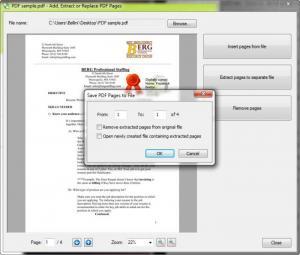 Enlarge Print2PDF Free Screenshot