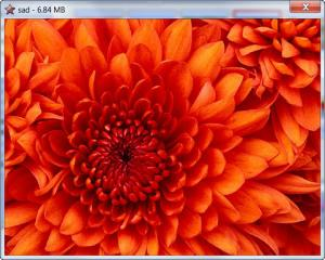 Enlarge Quick Slide Show Screenshot