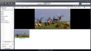 Enlarge JRiver Media Center Screenshot