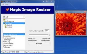 Enlarge Magic Image Resizer Screenshot