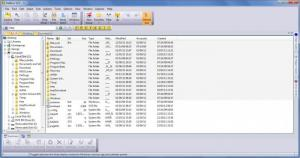 Enlarge FileBoss Screenshot