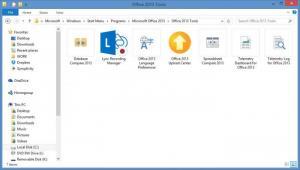 Enlarge Microsoft Office Professional Plus 2013 Screenshot
