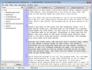 Enlarge E-TextEditor Screenshot