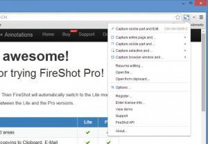 Enlarge FireShot Screenshot