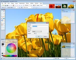 Enlarge Paint.NET Screenshot