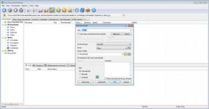 Enlarge Free Download Manager Screenshot