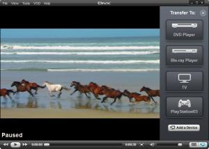Enlarge DivX Plus Player Screenshot