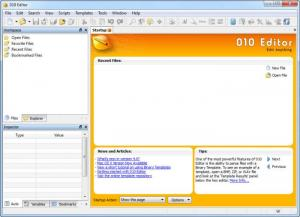 Enlarge 010 Editor Screenshot