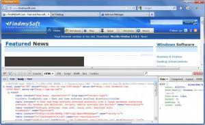 Enlarge Firebug Screenshot
