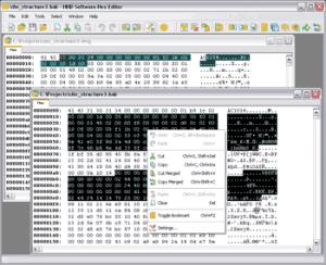 Enlarge Hex Editor Neo Screenshot