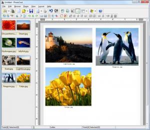 Enlarge PhotoCool Screenshot