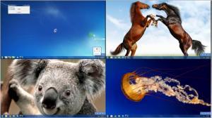 Enlarge Dexpot Screenshot