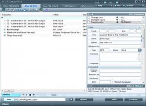 Enlarge TagScanner Screenshot