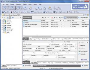 Enlarge Mp3 Tag Assistant Professional Screenshot