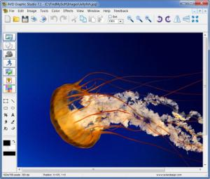 Enlarge AVD Graphic Studio Screenshot