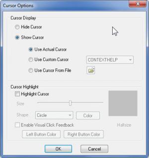 Enlarge CamStudio Screenshot
