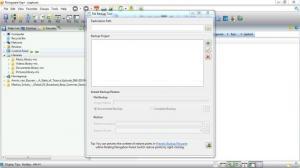 Enlarge Risingware Exp+ Free Edition Screenshot