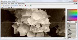 Enlarge Recolored Screenshot