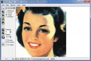 Enlarge Mazaika Screenshot