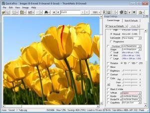 Enlarge Quick ePics Batch Screenshot