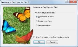 Enlarge Easy2Sync for  Files Screenshot
