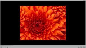 Enlarge PicturePlayer Screenshot